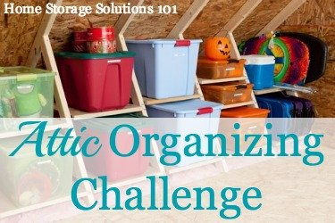 xattic-organizing-1-jpg-pagespeed-ic-mrce_vte5o