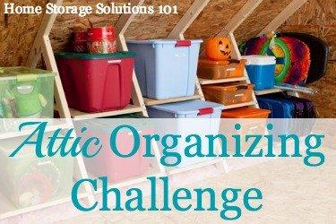 xattic-organizing-1-jpg-pagespeed-ic-mrce_vte5o